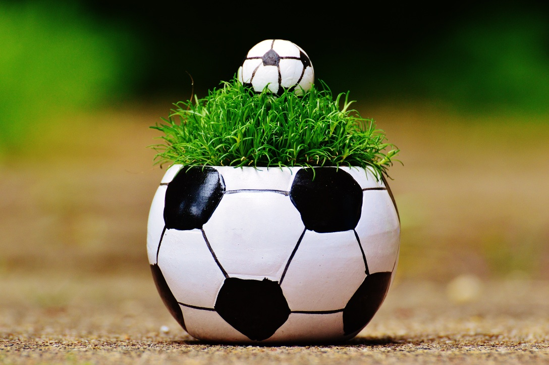 Soccer ball planter